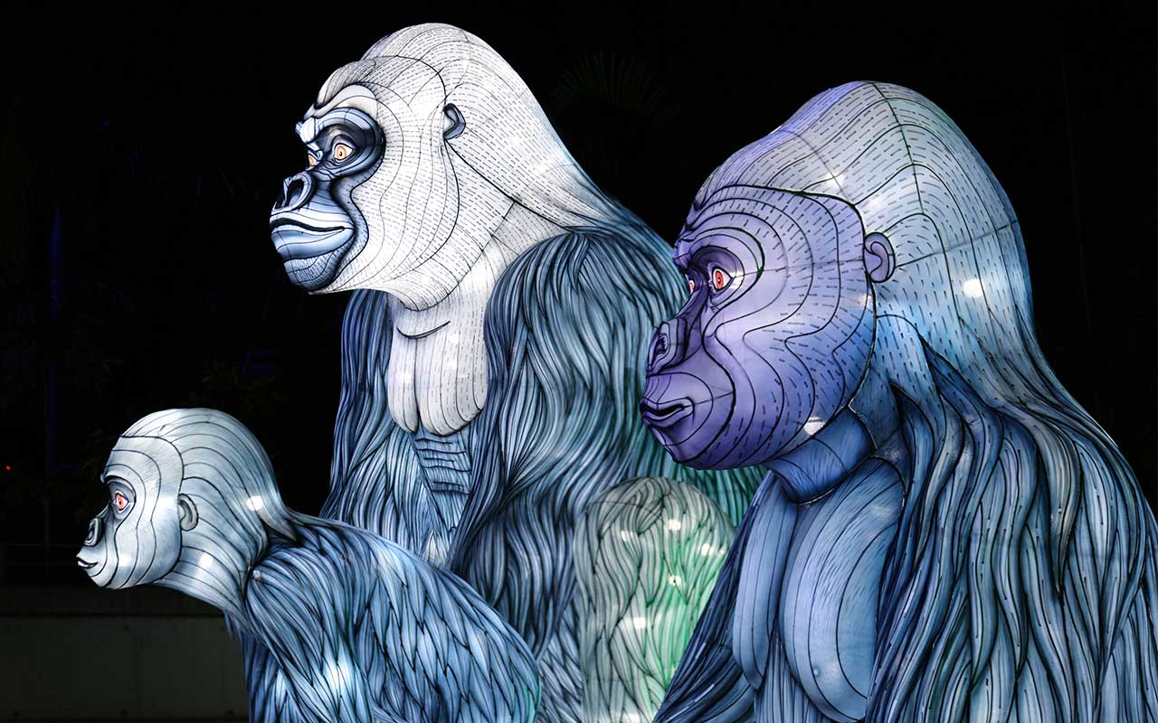 Illuminated Apes Sculptures for Vivid Sydney Light Festival